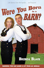 Were You Born in a Barn?