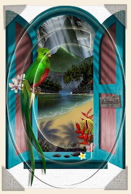 Moana tahiti for Fenetre sur pacifique