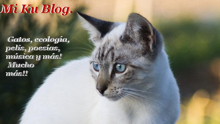 Mi Ku Blog