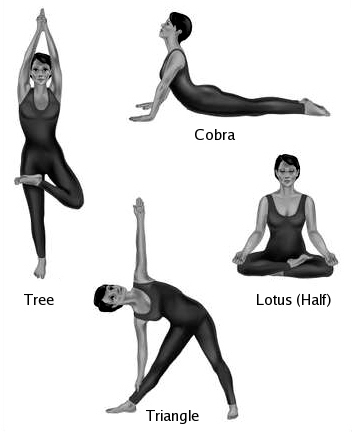 The Basic Yoga Positions For Beginners