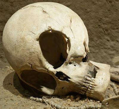 http://3.bp.blogspot.com/_G9qMaFrDlus/SKaX7hx81II/AAAAAAAAAac/a8K6u-bNM74/s400/alien-skull.jpg