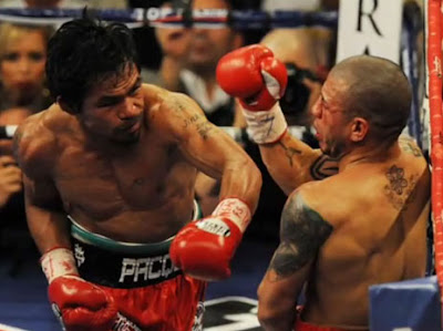Manny Pacquiao vs Miguel Cotto Fight Video
