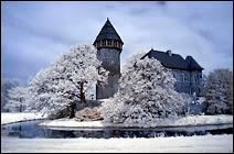Le château de Linn à Krefeld, photographié en IR couleur. Moins spectaculaire que le noir et blanc, où le contraste est très accentué, ici également le feuillage et l'herbe prennent une couleur blanche, virant parfois au bleu ciel dans les ombres. En N/B sous filtre W89B, le feuillage prend une teinte jaune pâle. Document Dirk Frantzen.