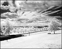 Photographie infrarouge réalisée au moyen d'un APN Nikon 950 en mode N/B équipé d'un filtre IR Hoya R-72. Document Sho.
