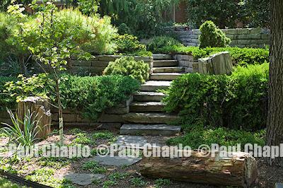 garden landscape architecture 2