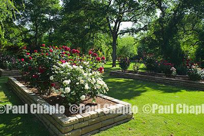 garden landscape architecture 6