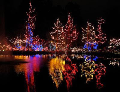 Canada Christmas Lights