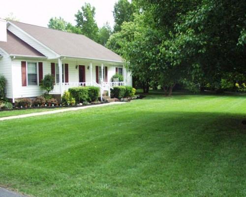 house living green healthy design
