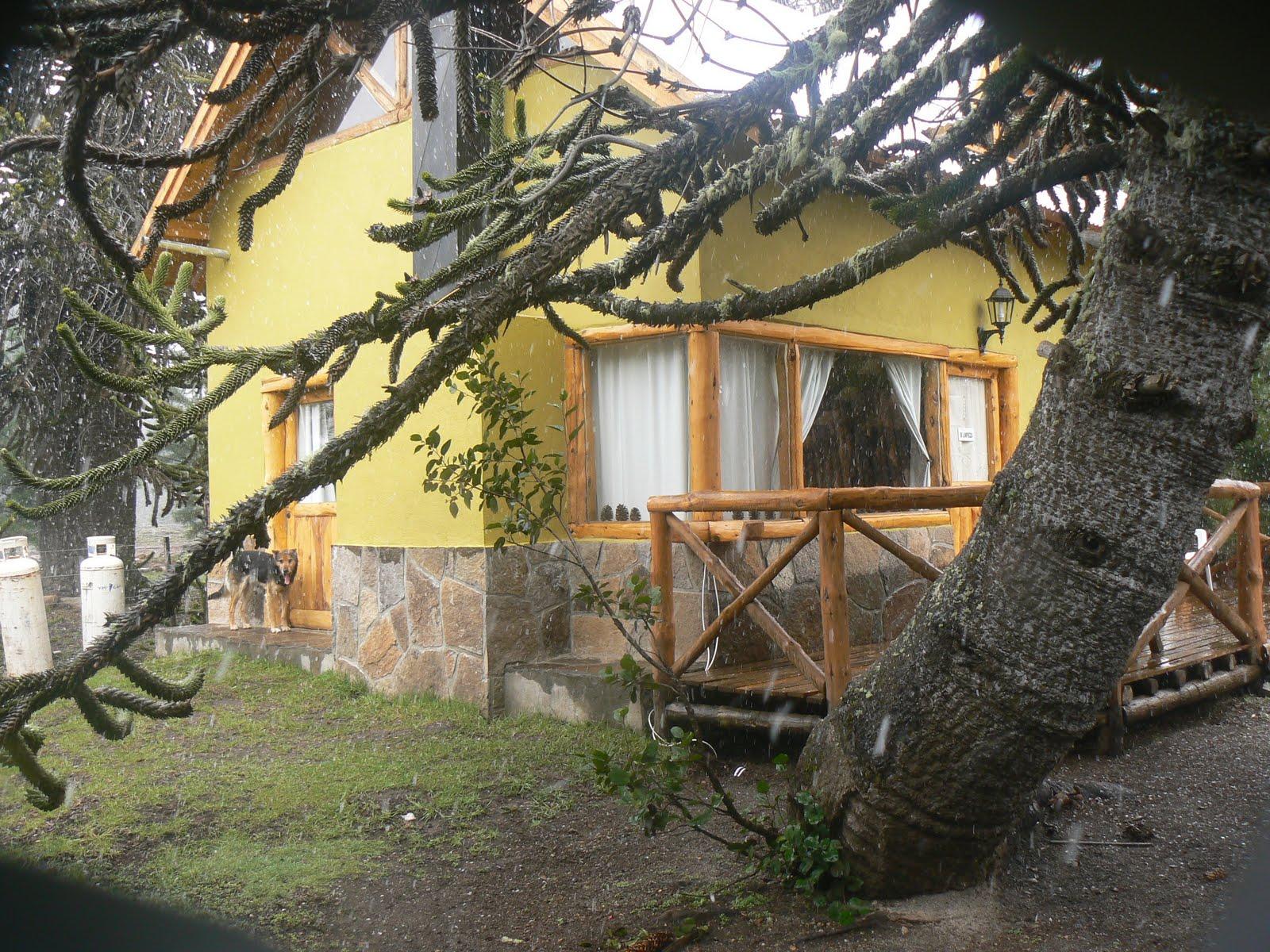 4 Post Cabana : Cabañas chepehuen cabaña pax
