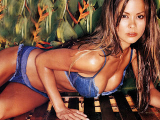 AMERICAN MODEL-DANCER BROOKE BURKE BIKINI WALLPAPERS