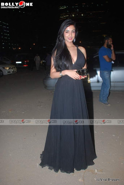 Sonal Chauhan in Black Gown at Star Screen Awards 2011