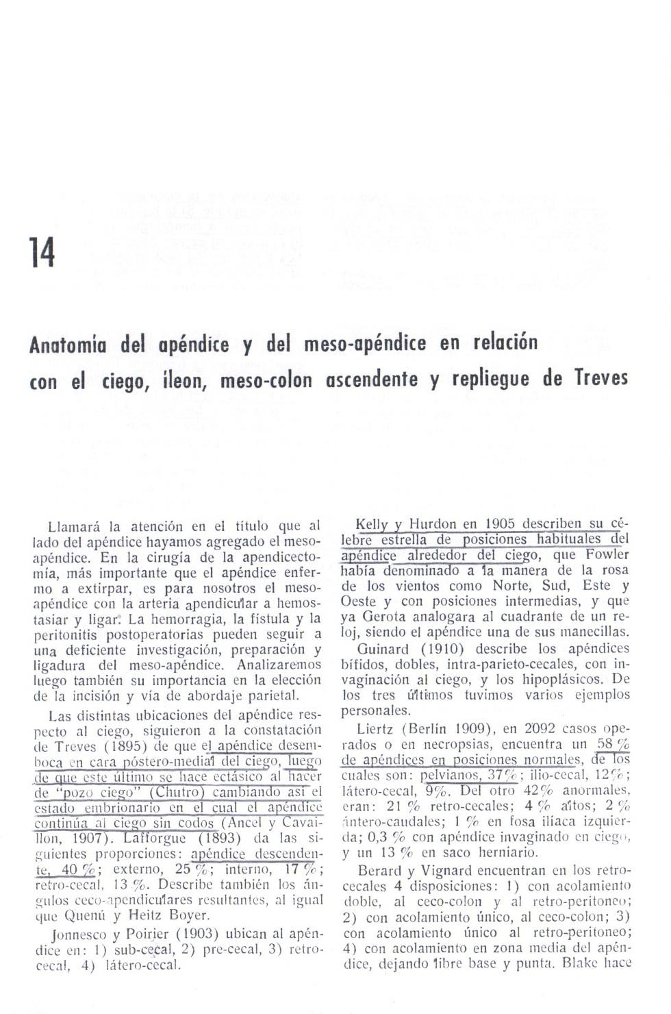 Trabajos de Investigación: ANATOMÍA DEL APÉNDICE Y DEL MESO-APÉNDICE ...