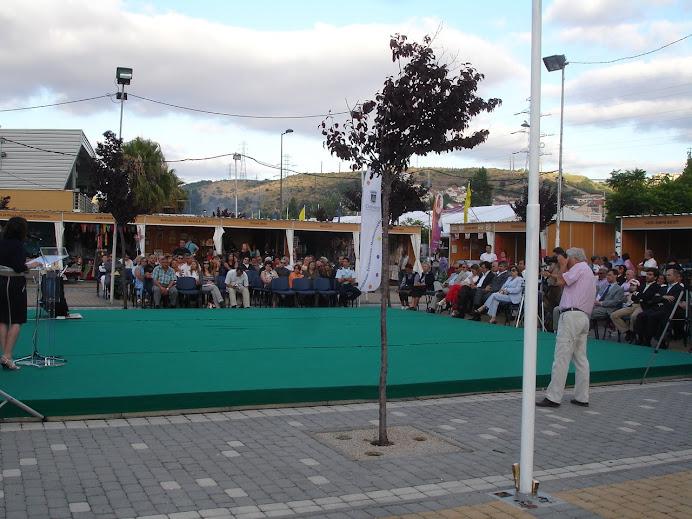 Festas da cidade de Odivelas 2010