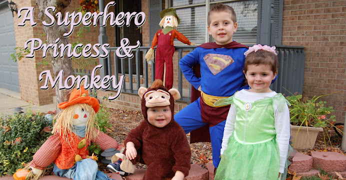 A Superhero Princess & Monkey