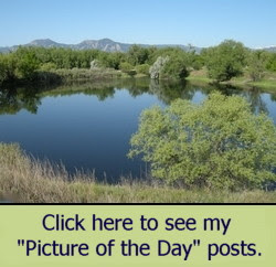 Click here for Pictures