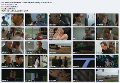 Prison.Break.The.Final.Break.DVDRip.XViD-WiDE