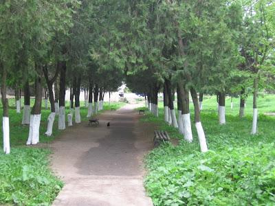 Твърдица Твардица Снимка Снимки  Центъра Центр Park