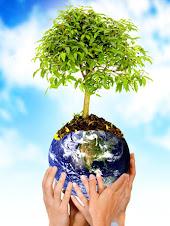 Sou um Blog Verde.Luto pela Consciência Ecológica !