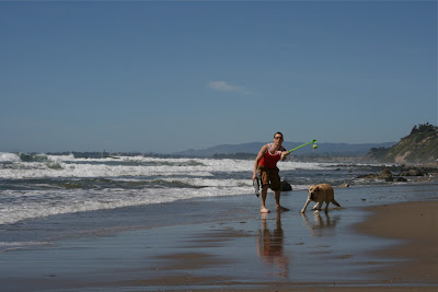Santa Barbara dog beach ball games