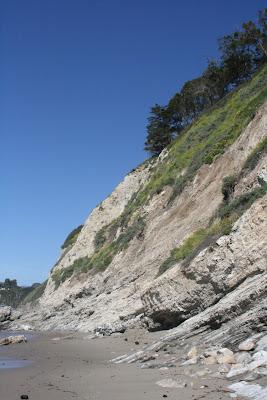 Hendry's Beach cliffs
