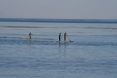 Standup paddling at Paradise Cove beach