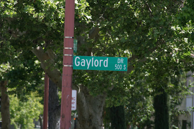 Gaylord Drive - we don't live here, but could you imagine if we did!