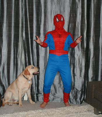 Halloween Spider-man posing