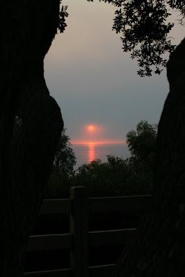 Sunset at Palisades Park