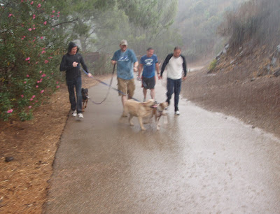 Caught out in the thunder storms at Runyon Canyon