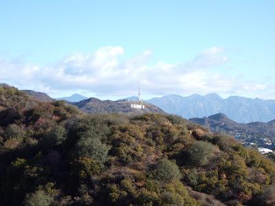 Runyon Canyon Hollywood Sign view