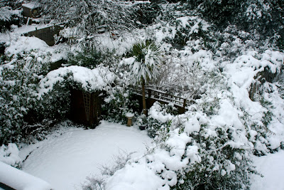 Our snow covered London garden from above