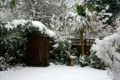 Chiswick garden covered in snow