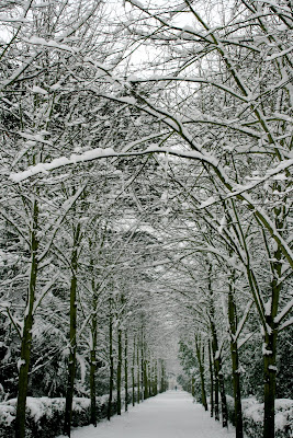 Chiswick House grounds in snow