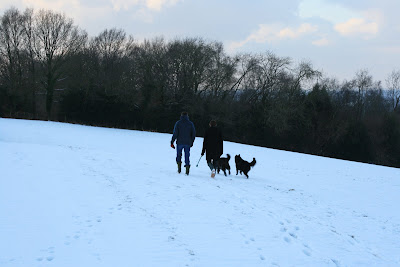 Walking the dogs in wintery Crowborough fields