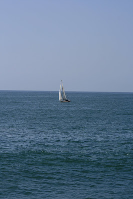 Sailing in the ocean at Venice Beach