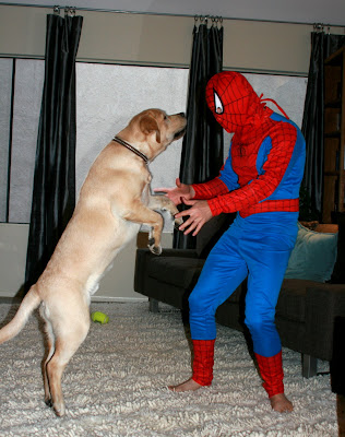 Spider-man sidekick Cooper
