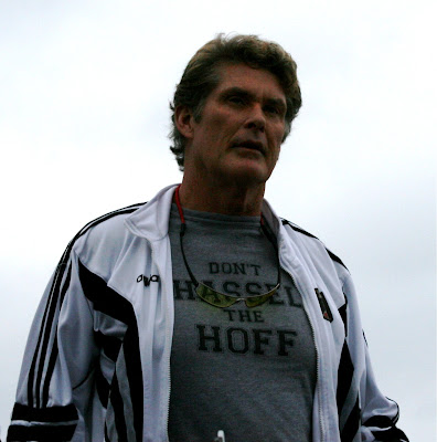 Don't hassle The Hoff - David Hasslehoff