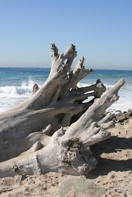 Sycamore Cove Ventura County