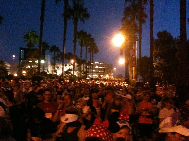 Disneyland Half Marathon 2010