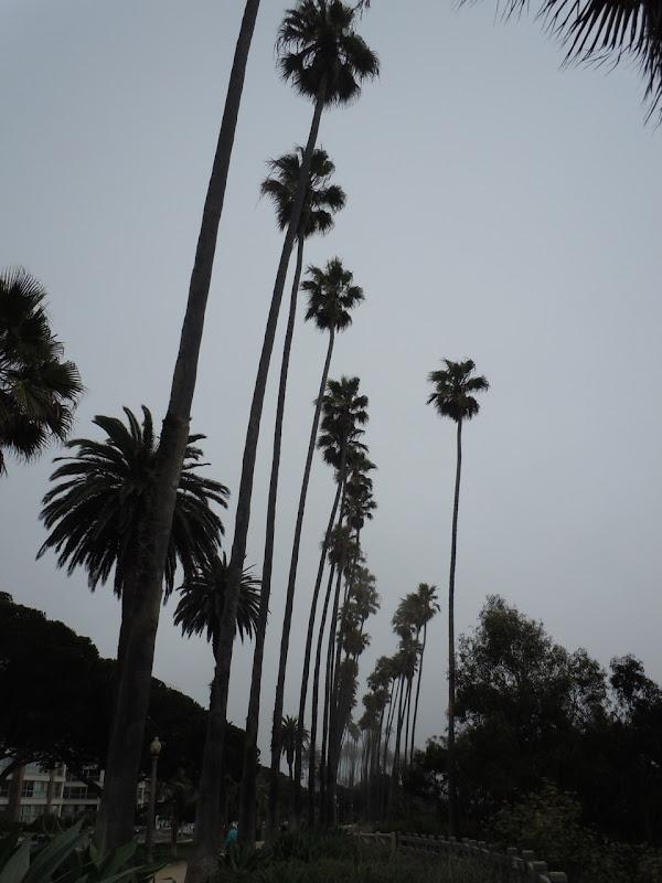 Foggy Santa Monica, California