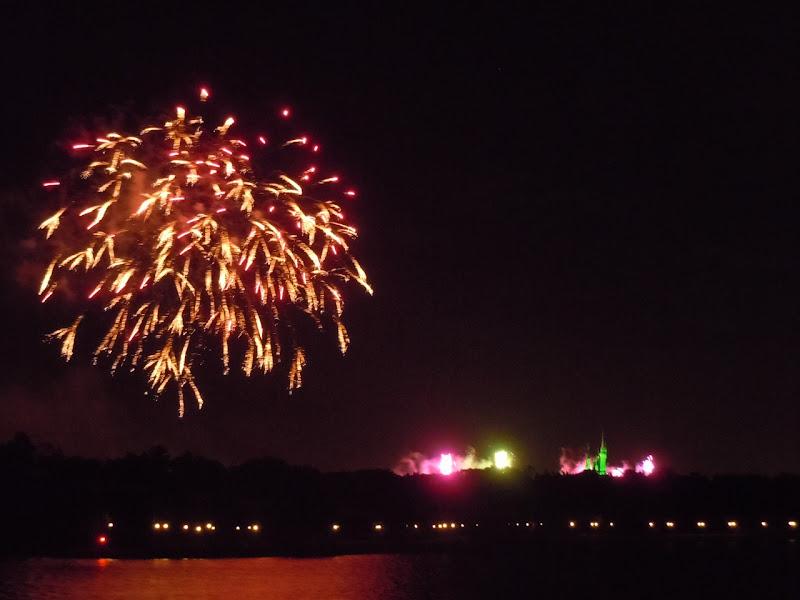 Colourful Magic Kingdom fireworks