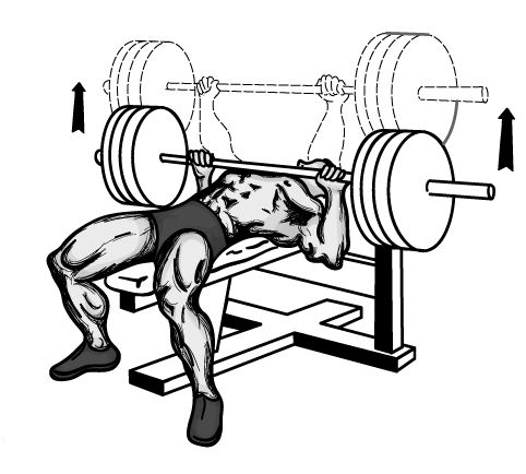 Mind amp muscle the art of the bench press