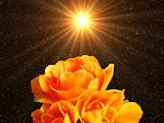 una rosa de luz
