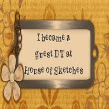 Ik heb de challenge gewonnen en was guest designer!!!