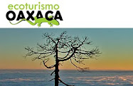 Ecoturismo en Oaxaca