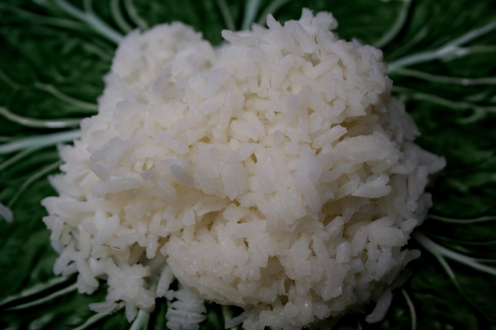 Mennonite Girls Can Cook: Perfect Steamed Rice