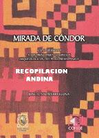 MIRADA DE CONDOR