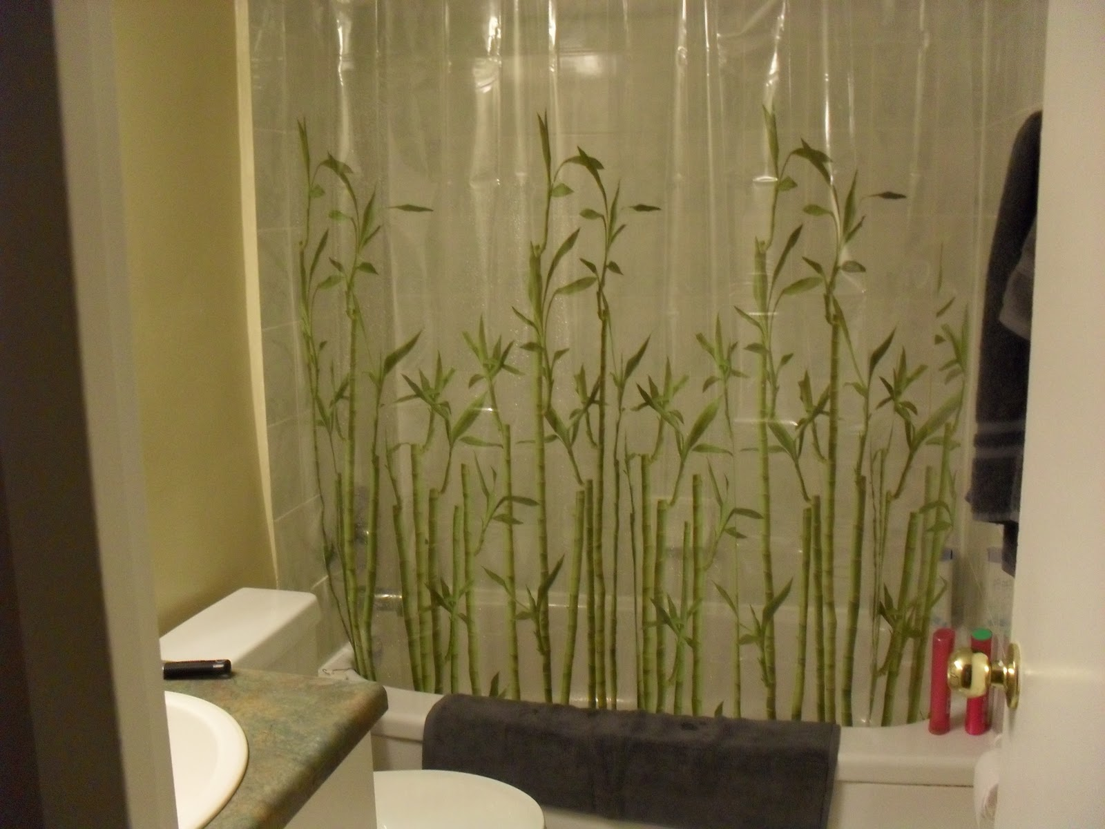 Bamboo shower curtain - The Bathroom Looks Pretty Much The Same Tacky Bamboo Shower Curtain And All The Only Problem Is That The Shower Curtain Tries To Attack Me While I M