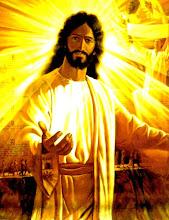 Faça o Download da Barra de Ferramentas do Site Bíblia e a Ciência