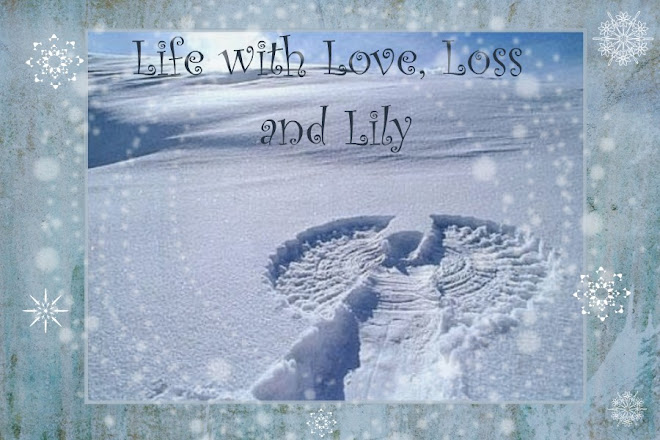 Life with Love, Loss, and Lily